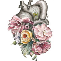 Floral Anatomy Heart Art Print by Trisha Thompson Adams